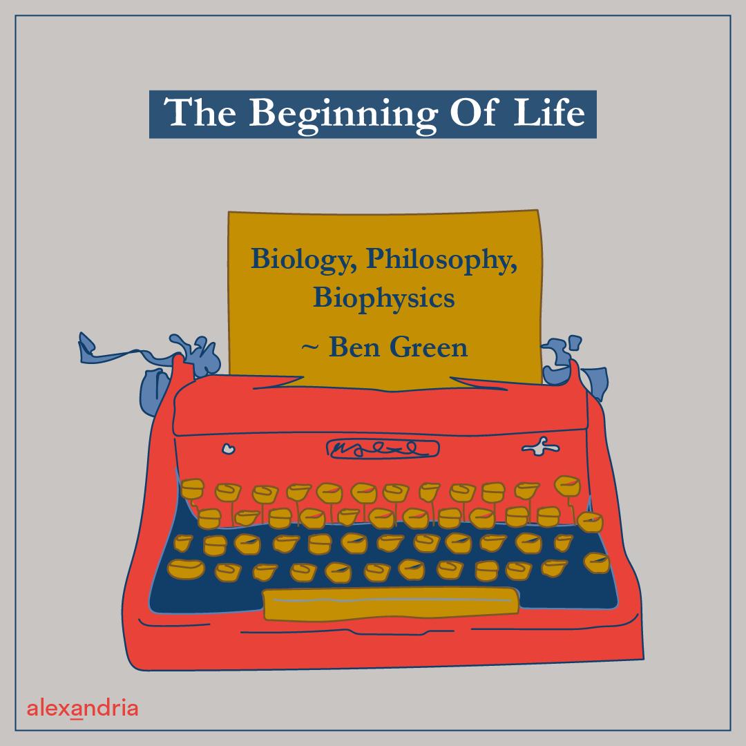 Essay erster Platz Beginning of Life